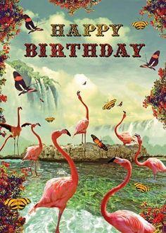 Happy Birthday Greetings Card - Flamingoes - by Max Hernn by Lip International, http://www.amazon.co.uk/dp/B0040QF3SE/ref=cm_sw_r_pi_dp_8G6.sb1SXR2GP #compartirvideos.es #videosdivertidos