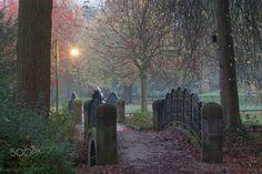 Buergerpark in Autumn at Dusk , Bremen - Buergerpark in Autumn at Dusk , Bremen, Germany   I Bremer Buergerpark  im Herbst, Bremen, Deutschland, Europa