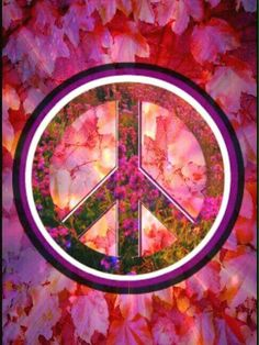 Walk in Peace ☮