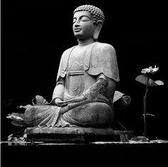 meditar, relajar, pensar, eliminar y transformar