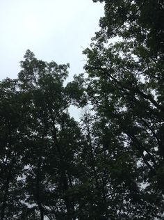 j Seneca Rocks, Clouds, Earth, Outdoor, Outdoors, The Great Outdoors, Mother Goddess, Cloud, World