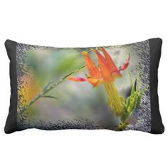 Crimson Columbine  Black end Pillow from Florals by Fred #zazzle #gift #photogift