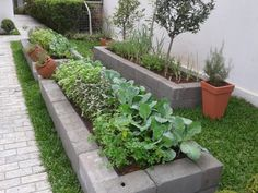 O cplantar.com, este é o melhor site para você aprender como plantar. Hoje vamos te ensinar como fazer sua horta. Terrace Garden, Garden Planters, Garden Beds, Home Vegetable Garden, Home And Garden, Comment Planter, Little Gardens, House Plants Decor, Edible Garden