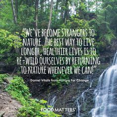 It's time to get back to nature!   www.foodmatters.tv