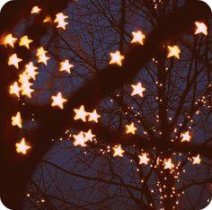 Stars... #stars #light