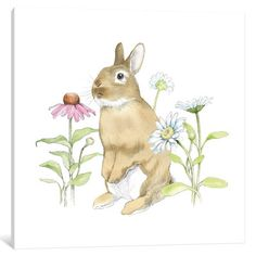 "Lark Manor Wildflower Bunnies IV Graphic Art on Wrapped Canvas Size: 12"" H x 12"" W x 0.75"" D"