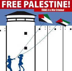 Israel is a war criminal International Court Of Justice, Timeline Photos, Palestine, Homeland, Human Rights, Join, War, Free, Israel