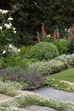 Zone Garden Design Scheme Html on