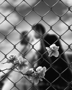 Moonflower, Bokeh Photography, Out Of Focus, Depth Of Field, Black And White Portraits, Flower Of Life, Planets, Scene, Day