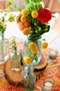 Just bright and right>>> love the yellow flowers, anyone know what they are?