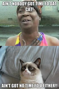 Grumpy Cat ain't got no time for Sweet Brown