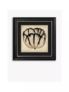 Pop Floral III Framed Print & Mount, 56 x 56cm, Black/White at John Lewis & Partners Antique Pewter, Recycled Wood, John Lewis, Recycling, Framed Prints, Black And White, Pop, Illustration, Floral