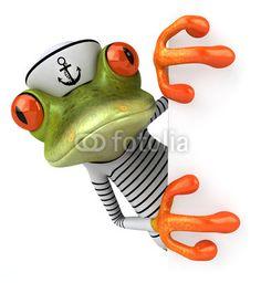 Sailor frog