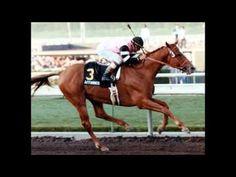 Affirmed: 1978 Triple Crown Winner  Affirmed is the last horse to win the Triple Crown, doing so in 1978 with teenage jockey Steve Cauthen aboard!