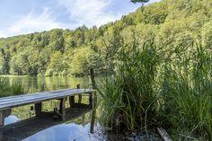 Ausflugsziele Schweiz: 99 Ideen für einen tollen Tagesausflug Switzerland, Hiking, Mountains, Water, Travel, Outdoor, Fitness Workouts, Day Trips, Road Trip Destinations