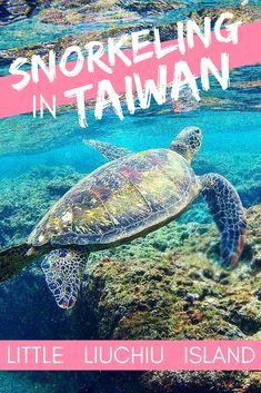 Snorkeling Taiwan Little Liuchiu Taiwan Travel, China Travel, Travel Usa, Vietnam Travel, Luxury Travel, Snorkeling, Us Travel Destinations, Travel Humor, Winter Travel