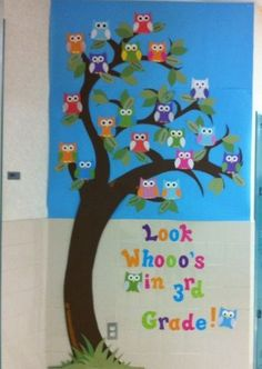 So want this for my classroom. Really Cute Owl Classroom Decor! Owl Bulletin Boards, Back To School Bulletin Boards, Bullentin Boards, Owl Theme Classroom, 3rd Grade Classroom, Classroom Ideas, Future Classroom, Classroom Organization, Classroom Pictures