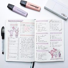 bullet journal spread pink, cactus