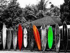 Beautiful photograph of surf boards #surfing #EndlessSummer