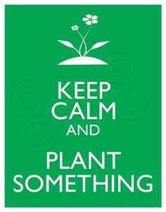 keep calm and plant something