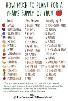 How Much to Plant for a Year's Supply of Fruit. Self-Sufficiency for a Year's Supply of Food. art design landspacing to plant Farm Gardens, Outdoor Gardens, Veggie Gardens, Vegetable Gardening, Backyard Vegetable Gardens, Planting Vegetables, Growing Vegetables, Organic Gardening, Garden Landscaping