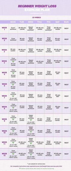 12 Week Weight Loss Program: Beginner