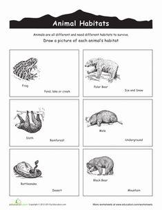 Kindergarten Plants, Animals & the Earth Worksheets: Animal Habitats Coloring