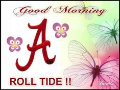 Image result for tide get ready to roll