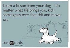 Learn a lesson from your dog. no matter what life brings you, kick some grass over that sh*t and move on ~