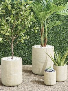 Add a rustic element to your space with handcrafted, ribbed planters. Fashioned of durable, all-weather materials with a drain hole at the bottom for ease of use.