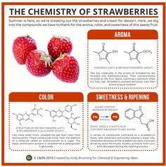 The Chemistry of Strawberries   Compound Chemistry and C&EN magazine