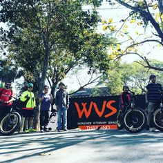"""Buzzy Bee Bike Fatbike E-bike on Instagram: """"Come and join us on our Bike for Dogs fundraising event for WVS Care for Dogs on Sunday February 23 🐝🚴♀️🐕🦺🦮🐩🐕…""""  🐝🚴♀️🚴🏼♂️ #buzzybeebike #chiangmai #thailand #ebike #ebiking #fatbike #fatbiking #cyclingtour #cycling #electricbicycle #thailandtravel #lovethailand #amazingthailand #wvscarefordogs #bikefordogs #dogshelter"""