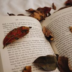always reading - Books & Cupcakes Book Photo Challenge - November Fall Inspiration, Writing Inspiration, Le Vent Se Leve, Book Cupcakes, Book Aesthetic, Autumn Aesthetic Tumblr, Aesthetic Collage, Book Photography, Iphone Photography