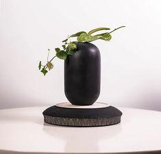 Japandi: o novo minimalismo na decoração e 5 maneiras de aplicá-lo em casa - FTCMAG Home Decor, Google, Vases, Gardens, Minimalism, Green, Plants, Decoration Home, Room Decor
