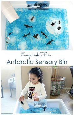 This easy-to-prepare sensory bin is great in an Antarctic unit in the winter and as a fun, educational way for kids to cool off in the summer - Living Montessori Now #sensorybin #DIYsensorytable #homeschool #preschool #Antarcticsensorybin Montessori Toddler, Montessori Activities, Preschool Activities, Geography Activities, Montessori Bedroom, Montessori Classroom, January Preschool Themes, Sensory Boxes, Sensory Table