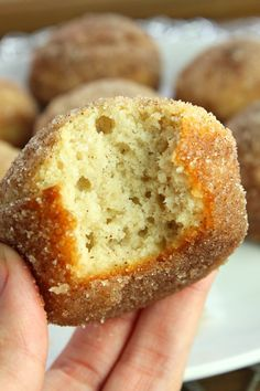 Keto Muffins- The Classic Cinnamon Sugar Donut Style! - Keto Breakfast - Ideas of Keto Breakfast - Keto Muffins- The Classic Cinnamon Sugar Donut Style! Love the low carb lifestyle? These keto muffins are for you. Great for breakfast or as a quick snack Desserts Keto, Keto Snacks, Quick Snacks, Quick Keto Dessert, Keto Foods, Keto Postres, Keto Donuts, Cinnamon Sugar Donuts, Cinnamon Muffins