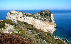 Τhe biggest island pharmacy.The sweet smell of Skiathos . Rhiannon Edwards goes herb-hiking on the verdant Greek island of Skiathos