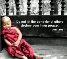do-not-let-the-behavior-of-others-destroy-your-inner-peace.jpg 590×523 pixels