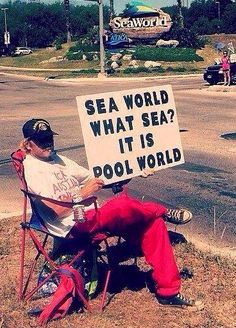 So true! Please don't support Seaworld! (Rather enjoy these wild animals in their natural habitat.... go to the ocean and watch them!) The good news is that attendance is declining at Seaworld!