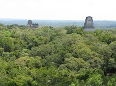 Tikal - The towering mega temples cover an area of 3 square kilometres and were shrines to the glorious dead and Mayan gods. Tikal, Tropical Forest, Cultural Experience, Family Travel, Monument Valley, Mount Rushmore, Journey, Adventure, Temples