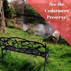 With Spring in full swing, you can visit plenty of Long Island's scenic spots. The Cedarmere Preserve is a wonderful spot in Roslyn if you want to absorb some nature on Long Island. RamadaRVC.com . . . . #Ramada #RockvilleCentre #LongIsland #NewYork #Hotel #Inn #Affordable #Stay #Near #JFK #JAG #AAA #AARP #discounts #Wedding #trends #rooms #block #planning #girlstrip #weekend #getaway #adventure #breakfast Long Island Attractions, Rockville Centre, Hotel Inn, Jfk, Wedding Trends, Garden Bridge, Preserve, Rooms, Outdoor Structures