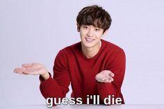 strangest idol ◇ taekook - t h i r t y t w o Funny Kpop Memes, Exo Memes, Stupid Memes, Dankest Memes, Stupid Stuff, Meme Pictures, Reaction Pictures, Meme Faces, Funny Faces