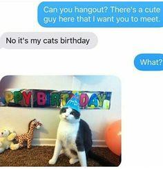 Oh come on, I'm sure he would love to go to her cat's birthday party!