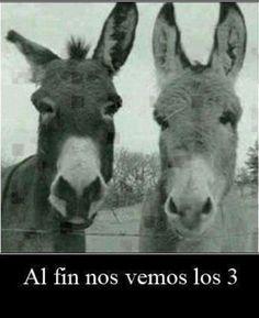 Frases Sarcasticas de Humor - #postales5601 http://chistegraficos.tumblr.com/post/161246105821