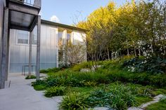 The Yard House — Tom Massey Jungle Gardens, Concrete Paving, Polycarbonate Panels, Courtyard House, Grand Designs, Garden Features, Landscape Photographers, Portfolio Design, Garden Landscaping