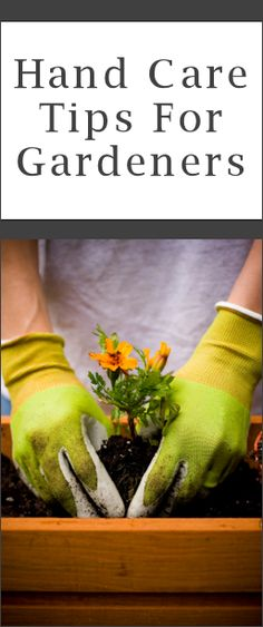 Gardener's Hands 101: Protection and Cleaning Tips