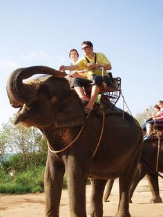 Ride an elephant somewhere exotic. CHECK!! But it wasn't somewhere exotic >.