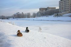 the city where I live - Ivanovo