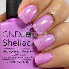 CND shellac beckoning begonia