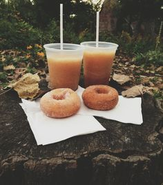 Apple cider slushies + apple donuts ok bye.
